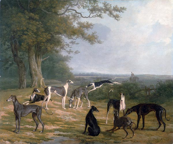 Nine Greyhounds in a Landscape, c.1807 | Jacques-Laurent Agasse | Painting Reproduction
