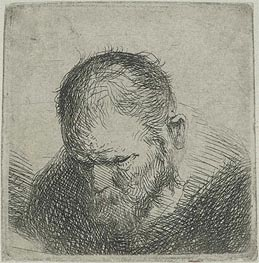 Bearded Man Looking Down | Jan Lievens | Painting Reproduction