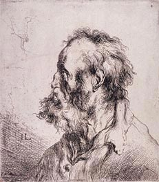 Bust of an Old Man | Jan Lievens | Gemälde Reproduktion