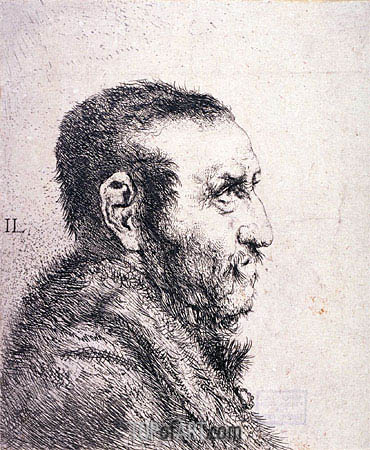 Bust of a Man, undated | Jan Lievens | Gemälde Reproduktion