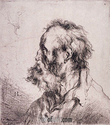 Bust of an Old Man, undated | Jan Lievens | Gemälde Reproduktion