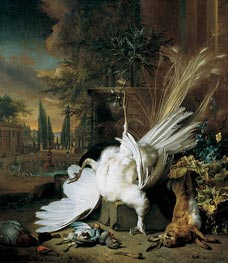 The White Peacock, 1692 by Jan Weenix | Painting Reproduction