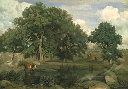 Forest of Fontainbleau, 1846 by Corot | Painting Reproduction