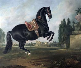 A Black Horse Performing the Courbette | Johann Georg Hamilton | Painting Reproduction