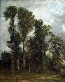 Bäume am Hampstead | Constable | Gemälde Reproduktion