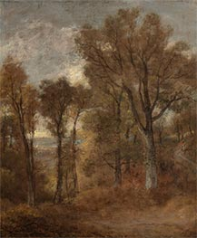 Woodland Scene Overlooking Dedham Vale, c.1802/03 by Constable | Painting Reproduction