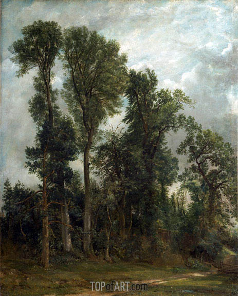 Bäume am Hampstead, 1821 | Constable | Gemälde Reproduktion