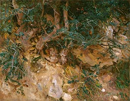 Valdemosa, Majorca: Thistles and Herbage on a Hillside | Sargent | Painting Reproduction