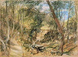 The Woodwalk, Farnley Hall, c.1818 by J. M. W. Turner | Painting Reproduction