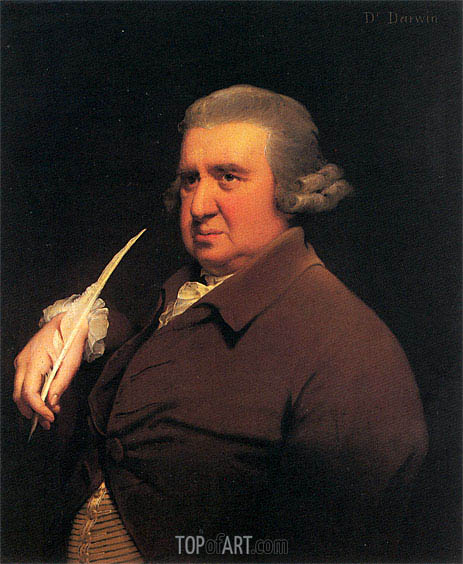 Portrait of Erasmus Darwin, c.1792/93   Wright of Derby   Painting Reproduction