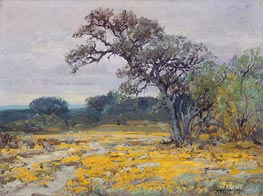 Coreopsis near San Antonio, Texas, 1919 by Julian Onderdonk | Painting Reproduction