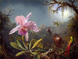 Cattleya Orchid and Three Brazilian Hummingbirds, 1871 von Martin Johnson Heade | Gemälde-Reproduktion