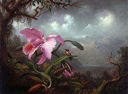Orchid and Hummingbird, c.1885 by Martin Johnson Heade | Painting Reproduction