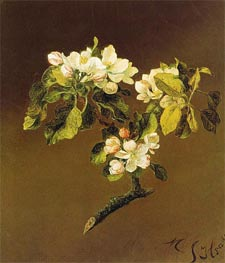 A Spray of Apple Blossoms, 1870 von Martin Johnson Heade | Gemälde-Reproduktion