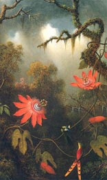 Two Hummingbirds Perched on Passion Flower Vines | Martin Johnson Heade | Painting Reproduction