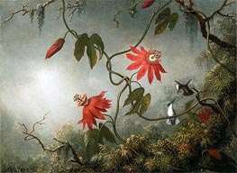 Passion Flowers and Hummingbirds, c.1870/83 by Martin Johnson Heade | Painting Reproduction
