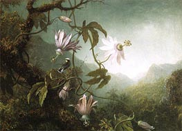 Hummingbird Pearched near Passion Flowers, c.1870 by Martin Johnson Heade | Painting Reproduction