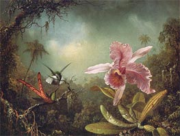 Orchid with Two Hummingbirds, 1871 by Martin Johnson Heade | Painting Reproduction