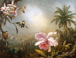 Orchids, Nesting Hummingbirds and a Butterfly, 1871 by Martin Johnson Heade | Painting Reproduction