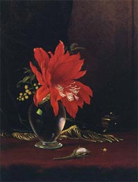Red Flower in a Vase, c.1871/80 by Martin Johnson Heade | Painting Reproduction