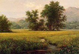 The Meadow | Martin Johnson Heade | Painting Reproduction