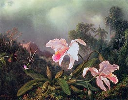 Jungle Orchids and Hummingbirds | Martin Johnson Heade | Painting Reproduction