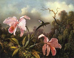 Orchids and Hummingbird, 1872 by Martin Johnson Heade | Painting Reproduction