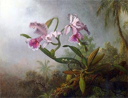 Pink Orchids and Hummingbird on a Twig | Martin Johnson Heade | Gemälde Reproduktion