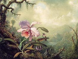 Heliodore's Woodstar and a Pink Orchid, c.1875/90 by Martin Johnson Heade | Painting Reproduction