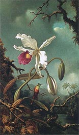 White Brazilian Orchid, c.1875/90 by Martin Johnson Heade | Painting Reproduction
