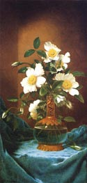 White Cherokee Roses in a Salamander Vase, c.1883/95 by Martin Johnson Heade | Painting Reproduction