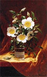 Cherokee Roses in a Glass, c.1883/95 by Martin Johnson Heade | Painting Reproduction