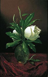Two Magnolia Blossoms in a Glass Vase, c.1890 by Martin Johnson Heade | Painting Reproduction