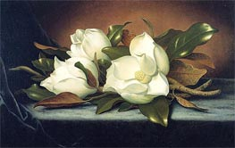 Giant Magnolias, c.1885/95 by Martin Johnson Heade | Painting Reproduction
