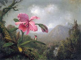 Orchid and Hummingbird near Mountain Waterfall, 1902 by Martin Johnson Heade | Painting Reproduction