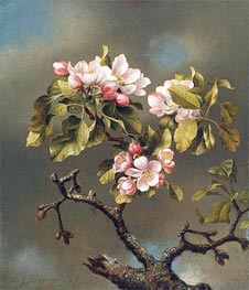 Branch of Apple Blossoms against a Cloudy Sky, 1867 by Martin Johnson Heade | Painting Reproduction