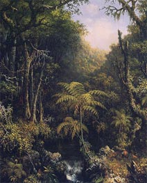 The Brazilian Rain Forest, 1864 by Martin Johnson Heade | Painting Reproduction