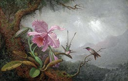 Hummingbirds and Orchids, 1880s by Martin Johnson Heade | Painting Reproduction