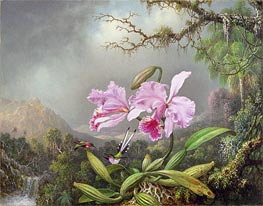 Study of an Orchid | Martin Johnson Heade | Painting Reproduction