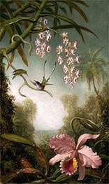 Orchids and Spray Orchids with Hummingbirds, c.1875/90 by Martin Johnson Heade | Painting Reproduction