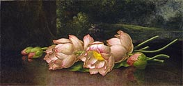 Lotus Flowers: A Landscape Painting in the Background, c.1885/00 by Martin Johnson Heade | Painting Reproduction
