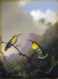 Two Humming Birds: 'Copper-tailed Amazili', c.1865/75 by Martin Johnson Heade | Painting Reproduction