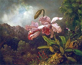Orchids in a Jungle, 1870s by Martin Johnson Heade | Painting Reproduction