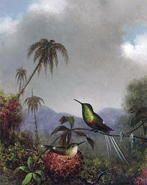 Two Thorn-Tails (Langsdorffs Thorn-Tail Brazil), c.1864/65 by Martin Johnson Heade | Painting Reproduction