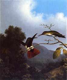 Black-Throated Mango, c.1864/65  by Martin Johnson Heade | Painting Reproduction