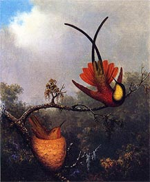 Crimson Topaz, c.1864/65  by Martin Johnson Heade | Painting Reproduction
