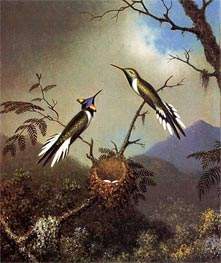 Hummingbirds at Their Nest - Sun Gems, c.1864/65  by Martin Johnson Heade | Painting Reproduction
