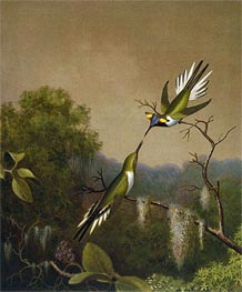 Brazilian Hummingbirds IV (Heliactin Cornuta), undated by Martin Johnson Heade | Painting Reproduction