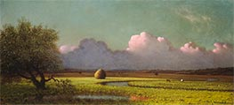 Sunlight and Shadow: The Newbury Marshes | Martin Johnson Heade | Painting Reproduction