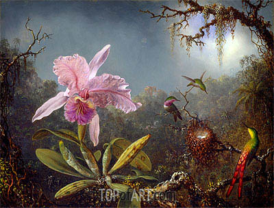 Cattleya Orchid and Three Brazilian Hummingbirds, 1871 | Martin Johnson Heade | Painting Reproduction
